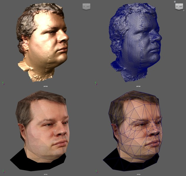 headscan_composite